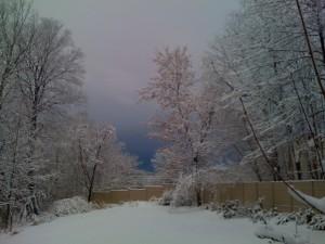 Winter skyline off the west porch