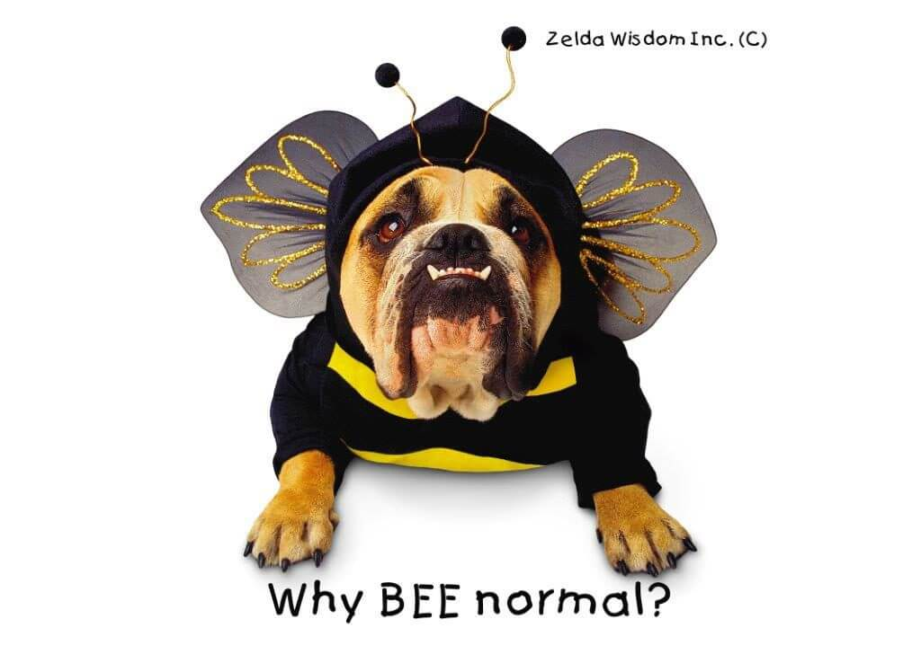 zelda why bee normal